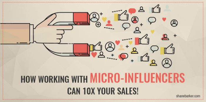 Working with Micro-Influencer