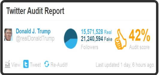 Twitter Audit report