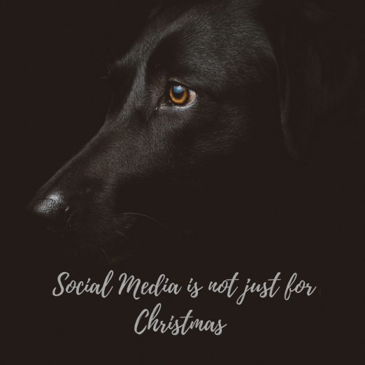 social media is not just for Christmas